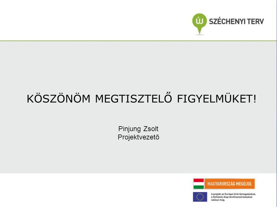 KÖSZÖNÖM MEGTISZTELŐ FIGYELMÜKET! Pinjung Zsolt Projektvezető