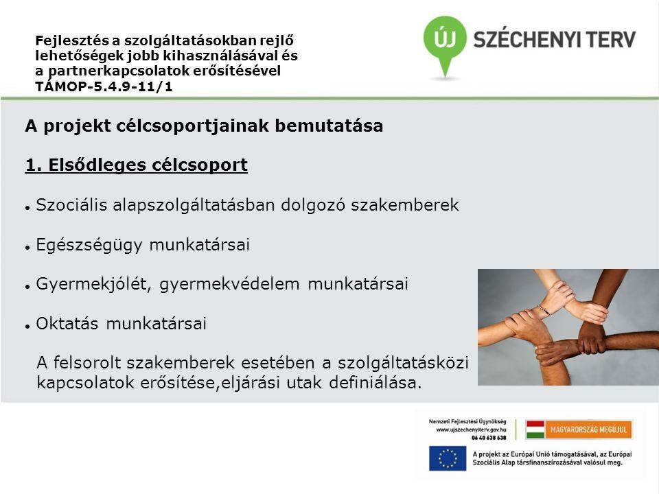 Fejlesztés a szolgáltatásokban rejlő lehetőségek jobb kihasználásával és a partnerkapcsolatok erősítésével TÁMOP-5.4.9-11/1 A projekt célcsoportjainak