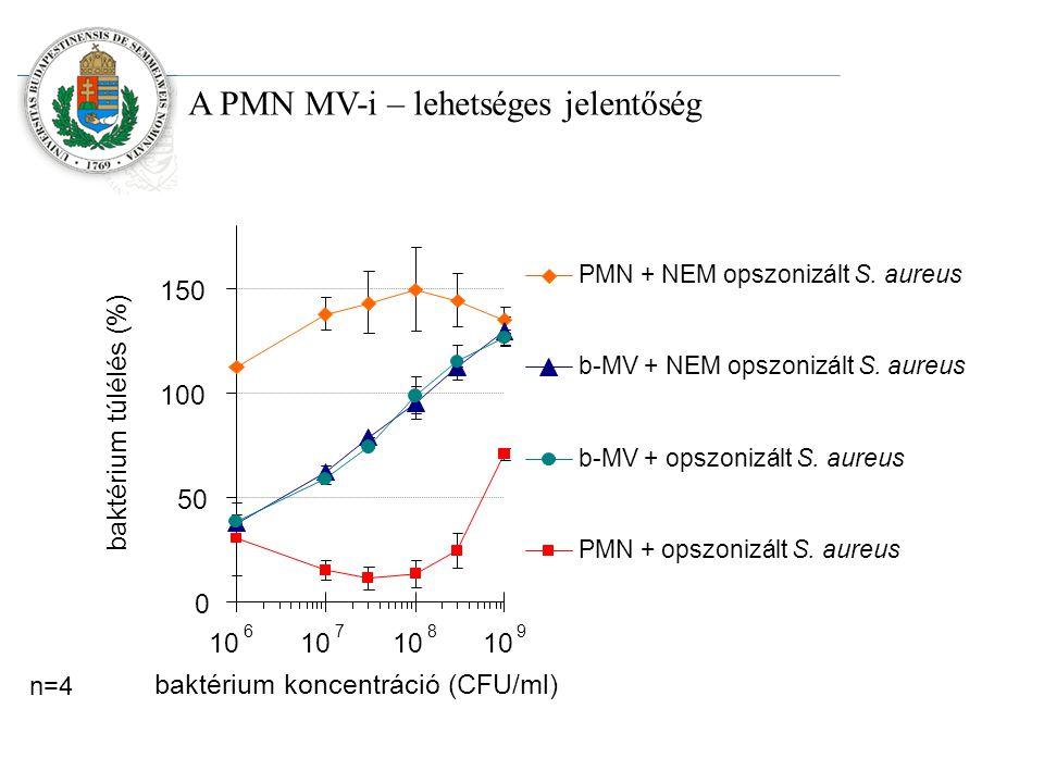 A PMN MV-i – lehetséges jelentőség n=4