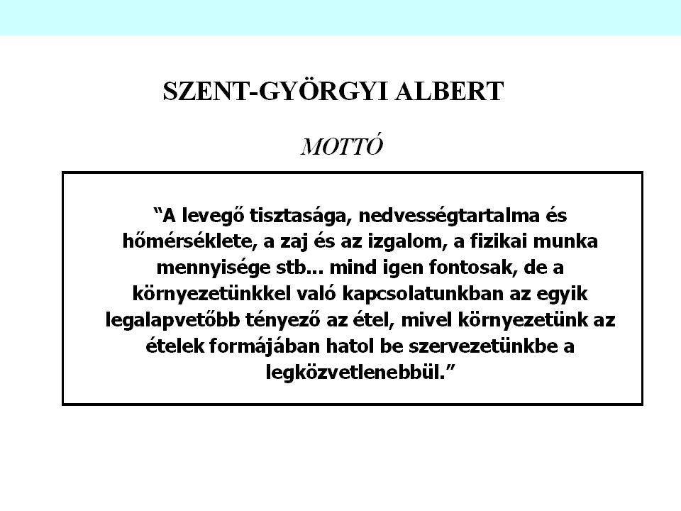 A nyilvántartás és a dokumentáció létrehozása (7.