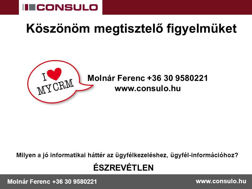 www.consulo.hu Molnár Ferenc +36 30 9580221 Köszönöm megtisztelő figyelmüket Molnár Ferenc +36 30 9580221 www.consulo.hu Milyen a jó informatikai hátt