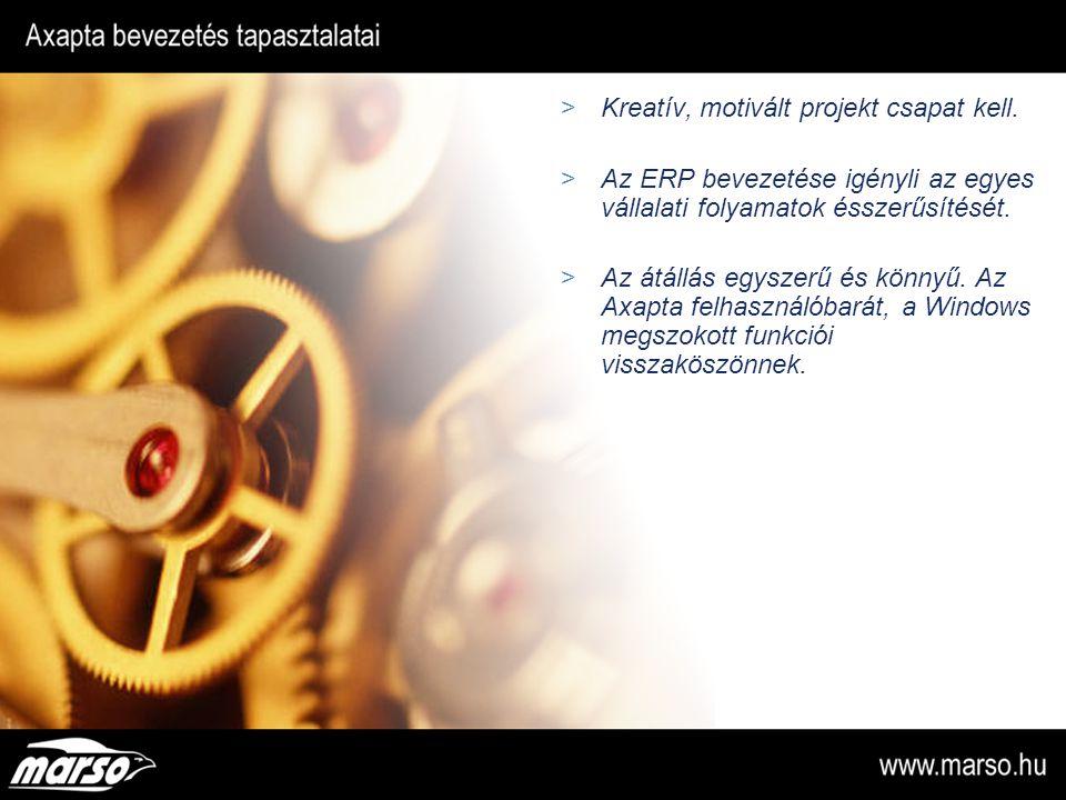 Kreatív, motivált projekt csapat kell.  Az ERP bevezetése igényli az egyes vállalati folyamatok ésszerűsítését.  Az átállás egyszerű és könnyű. Az