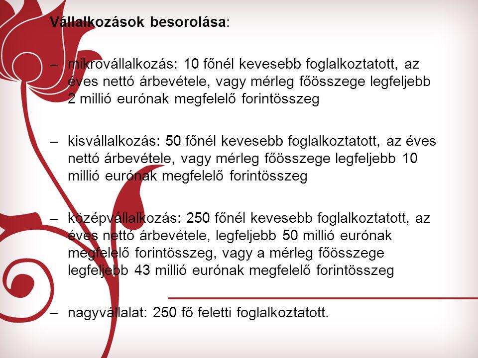 Vállalkozások besorolása: –mikrovállalkozás: 10 főnél kevesebb foglalkoztatott, az éves nettó árbevétele, vagy mérleg főösszege legfeljebb 2 millió eurónak megfelelő forintösszeg –kisvállalkozás: 50 főnél kevesebb foglalkoztatott, az éves nettó árbevétele, vagy mérleg főösszege legfeljebb 10 millió eurónak megfelelő forintösszeg –középvállalkozás: 250 főnél kevesebb foglalkoztatott, az éves nettó árbevétele, legfeljebb 50 millió eurónak megfelelő forintösszeg, vagy a mérleg főösszege legfeljebb 43 millió eurónak megfelelő forintösszeg –nagyvállalat: 250 fő feletti foglalkoztatott.