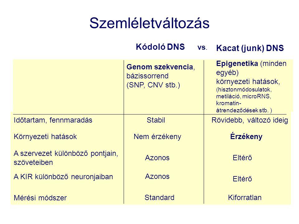 Szemléletváltozás Kódoló DNS Kacat (junk) DNS Genom szekvencia, bázissorrend (SNP, CNV stb.) vs.