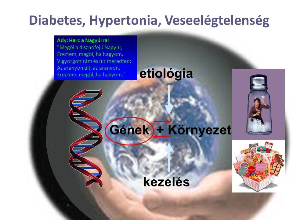 Diabetes, Hypertonia, Veseelégtelenség etiológia Gének + Környezet kezelés Ady: Harc a Nagyúrral Megöl a disznófejű Nagyúr, Éreztem, megöl, ha hagyom, Vigyorgott rám és ült meredten: Az aranyon ült, az aranyon, Éreztem, megöl, ha hagyom.