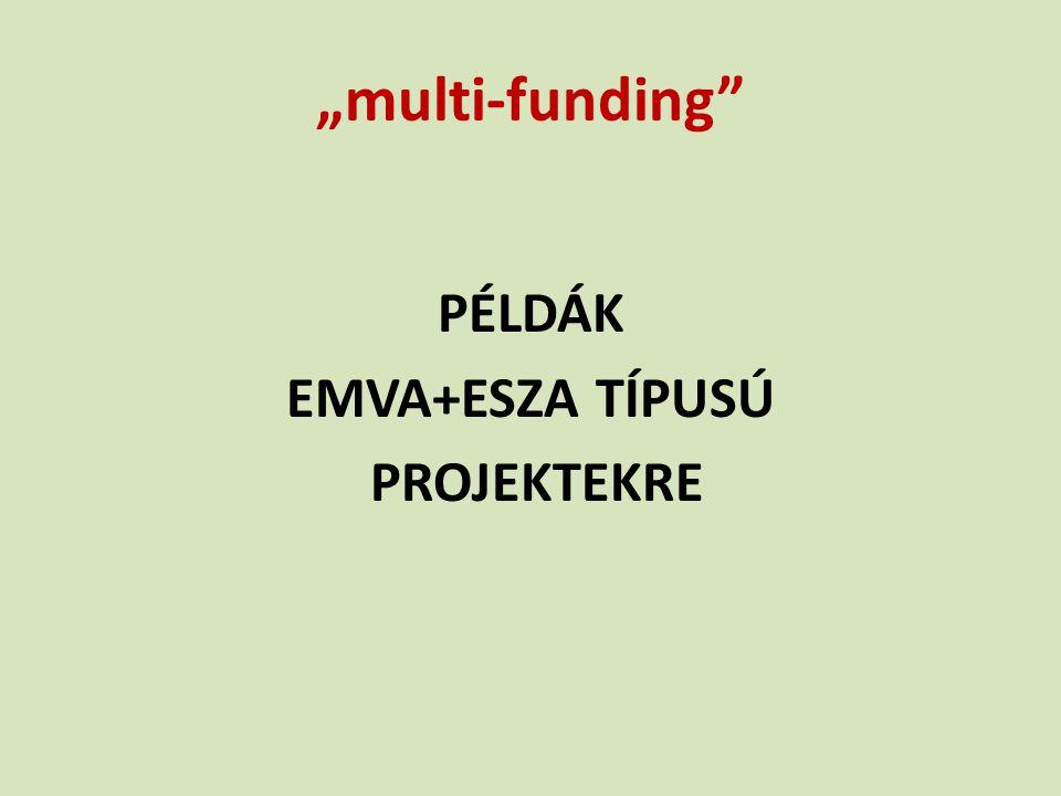 """multi-funding"" PÉLDÁK EMVA+ESZA TÍPUSÚ PROJEKTEKRE"