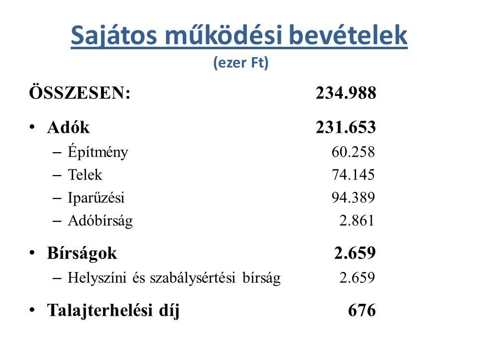 Egyéb bevételek (ezer Ft) ÖSSZESEN:20.529 2010-es működési pénzmaradvány 10.153 Egyéb bevételek 10.376