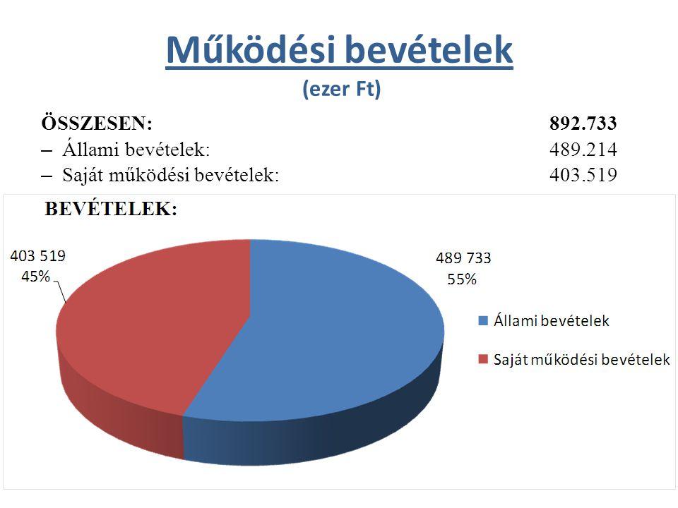 Működési bevételek (ezer Ft) ÖSSZESEN:892.733 – Állami bevételek: 489.214 – Saját működési bevételek:403.519