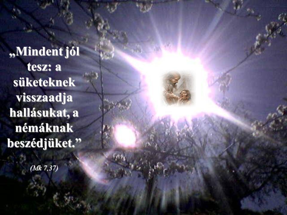 """Jézus egyetlen szavával meggyógyította a süketnémát, akit az útja során hozzá vezettek: """"Effata"""" – mondta neki, vagyis """"nyílj meg"""". A tömeg elcsodálko"""