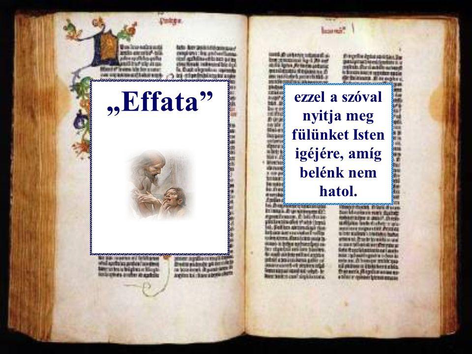 """""""Effata Ezt mondták ki fölöttünk is a keresztségünk pillanatában."""
