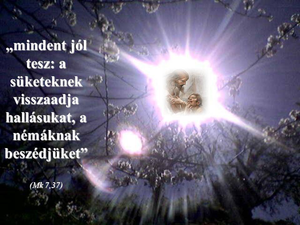 És ha tehetetlennek érezzük magunkat, mert látszólag nem állunk a helyzet magaslatán, fenntart a bizonyosság, hogy Jézus, aki szemünket és ajkunkat felnyitotta…