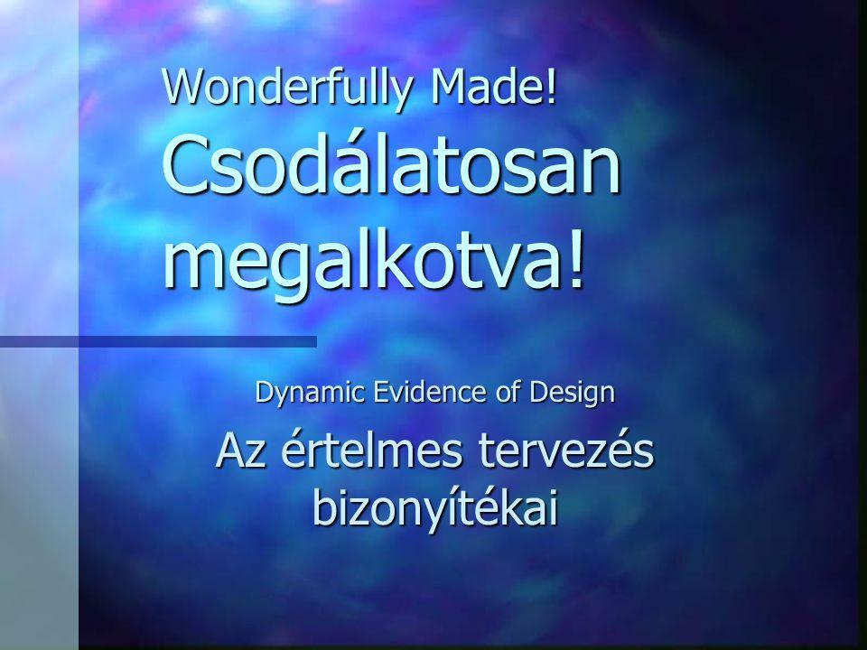 Wonderfully Made. Csodálatosan megalkotva.