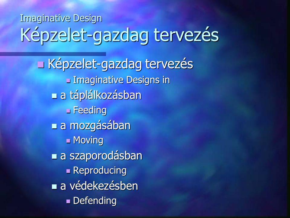 Imaginative Design Képzelet-gazdag tervezés Képzelet-gazdag tervezés Képzelet-gazdag tervezés Imaginative Designs in Imaginative Designs in a táplálkozásban a táplálkozásban Feeding Feeding a mozgásában a mozgásában Moving Moving a szaporodásban a szaporodásban Reproducing Reproducing a védekezésben a védekezésben Defending Defending