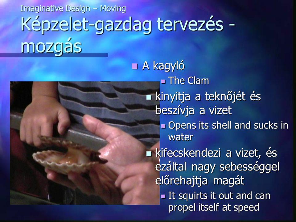 Imaginative Design – Moving Képzelet-gazdag tervezés - mozgás A kagyló A kagyló The Clam The Clam kinyitja a teknőjét és beszívja a vizet kinyitja a teknőjét és beszívja a vizet Opens its shell and sucks in water Opens its shell and sucks in water kifecskendezi a vizet, és ezáltal nagy sebességgel előrehajtja magát kifecskendezi a vizet, és ezáltal nagy sebességgel előrehajtja magát It squirts it out and can propel itself at speed It squirts it out and can propel itself at speed