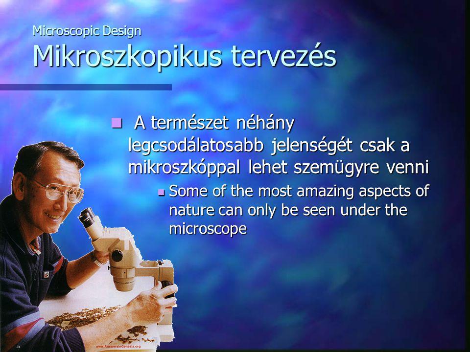 Microscopic Design Mikroszkopikus tervezés A természet néhány legcsodálatosabb jelenségét csak a mikroszkóppal lehet szemügyre venni A természet néhány legcsodálatosabb jelenségét csak a mikroszkóppal lehet szemügyre venni Some of the most amazing aspects of nature can only be seen under the microscope Some of the most amazing aspects of nature can only be seen under the microscope