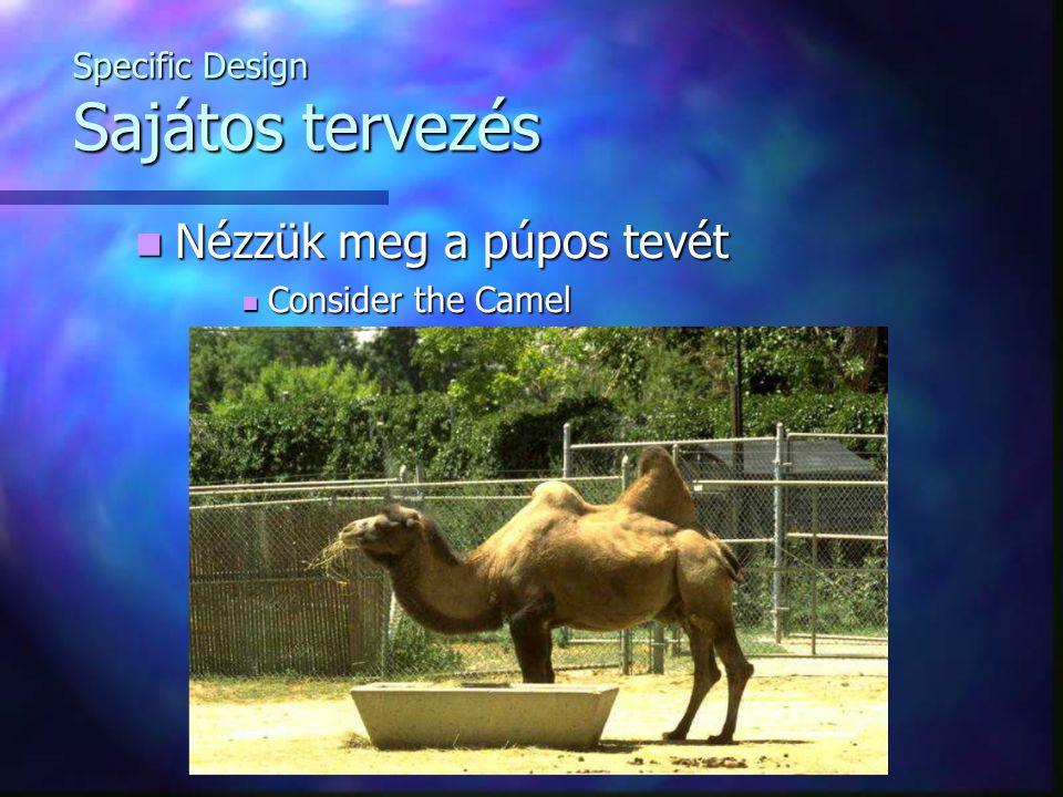 Specific Design Sajátos tervezés Nézzük meg a púpos tevét Nézzük meg a púpos tevét Consider the Camel Consider the Camel