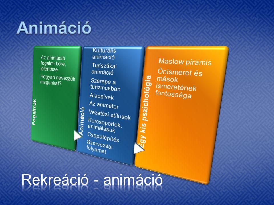 Alapvetően 3 különböző vonal különíthető el: · filmes- és számítástechnikai animáció · szocio-kulturális animáció · turisztikai (rendezvény) animáció