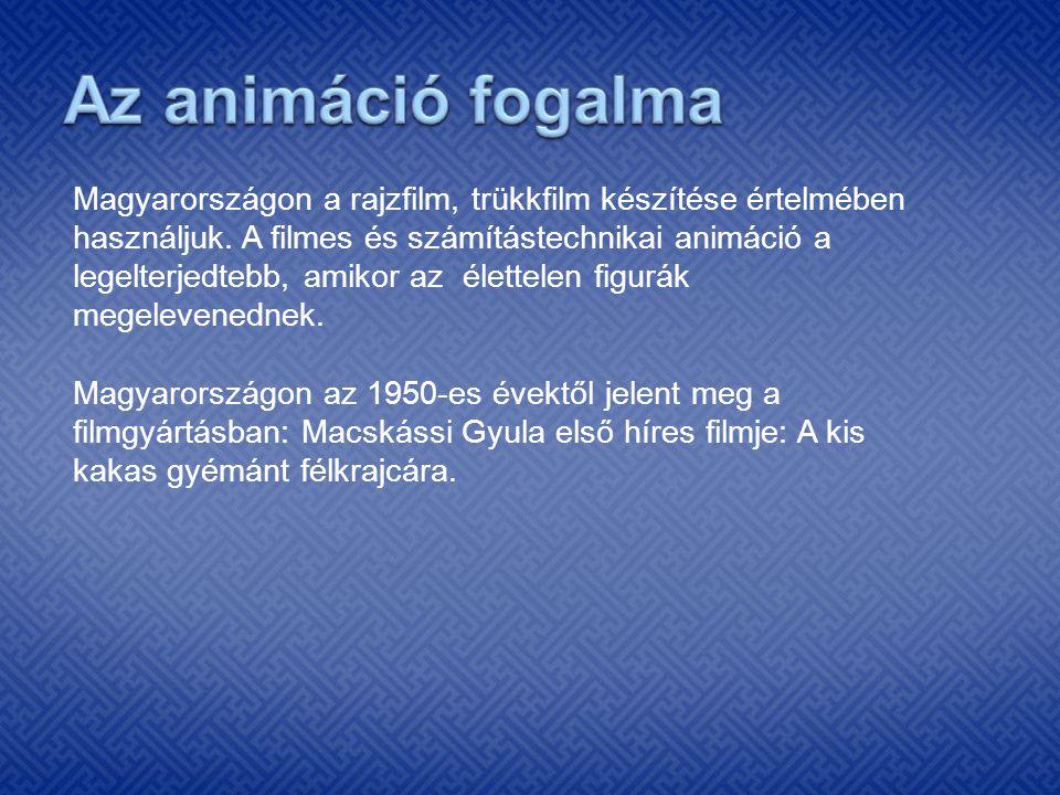 Magyarországon a rajzfilm, trükkfilm készítése értelmében használjuk. A filmes és számítástechnikai animáció a legelterjedtebb, amikor az élettelen fi