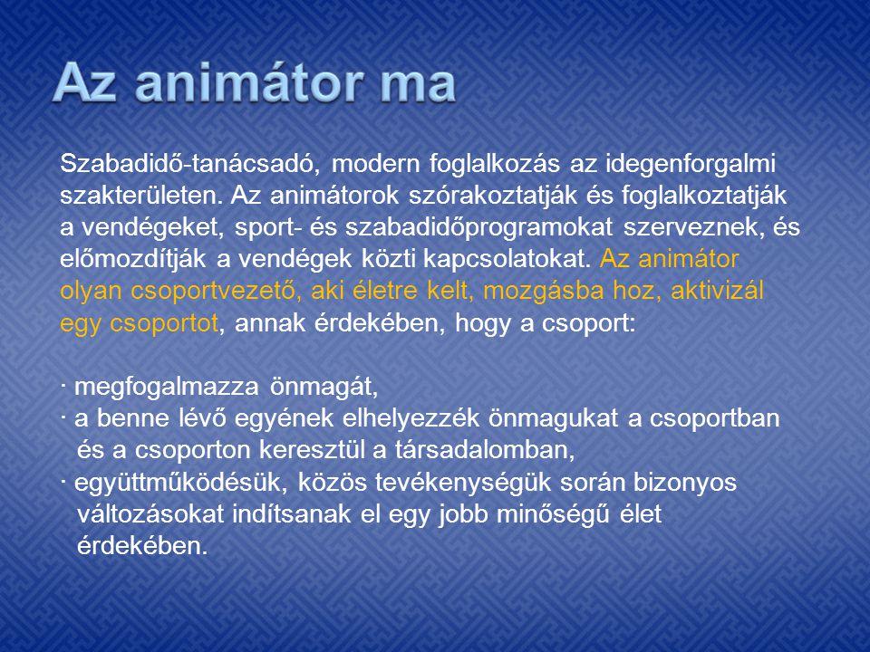 Autoriter stílus: az animátor a saját álláspontját akarja elfogadtatni.