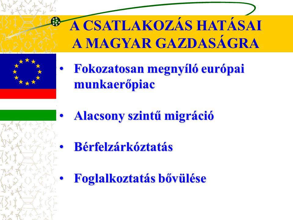 A CSATLAKOZÁS HATÁSAI A MAGYAR GAZDASÁGRA Fokozatosan megnyíló európai munkaerőpiacFokozatosan megnyíló európai munkaerőpiac Alacsony szintű migrációAlacsony szintű migráció BérfelzárkóztatásBérfelzárkóztatás Foglalkoztatás bővüléseFoglalkoztatás bővülése