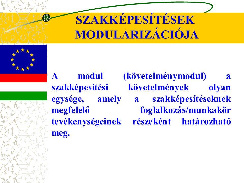 SZAKKÉPESÍTÉSEK MODULARIZÁCIÓJA A modul (követelménymodul) a szakképesítési követelmények olyan egysége, amely a szakképesítéseknek megfelelő foglalkozás/munkakör tevékenységeinek részeként határozható meg.