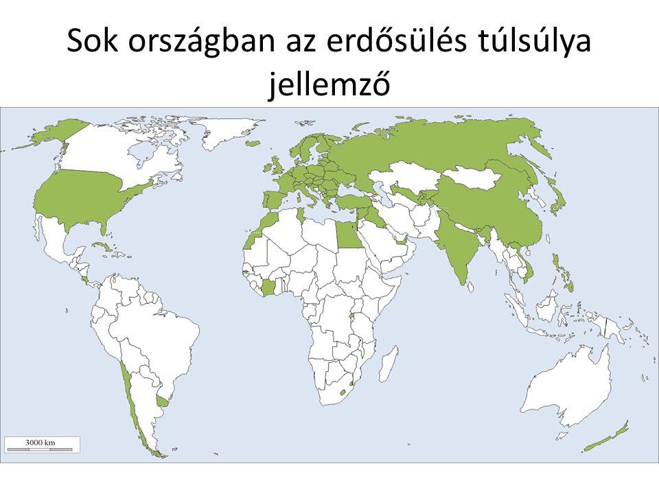 Fajszám-terület összefüggés Biodiverzitás Faktorok 1.00 0.95 0.80 0.60 Fajszám (%) Habitat diverzitás (%)