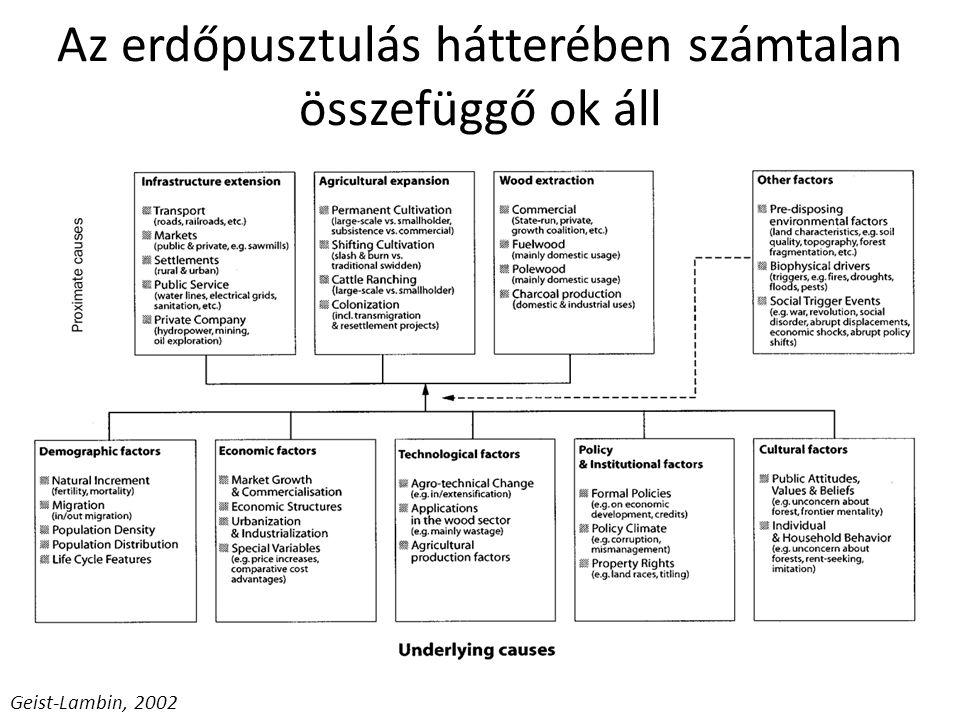 Geist-Lambin, 2002 Az erdőpusztulás hátterében számtalan összefüggő ok áll