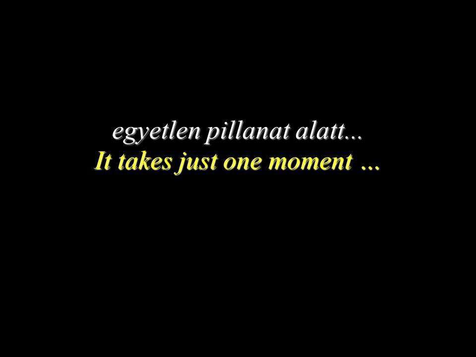 egyetlen pillanat alatt... It takes just one moment …