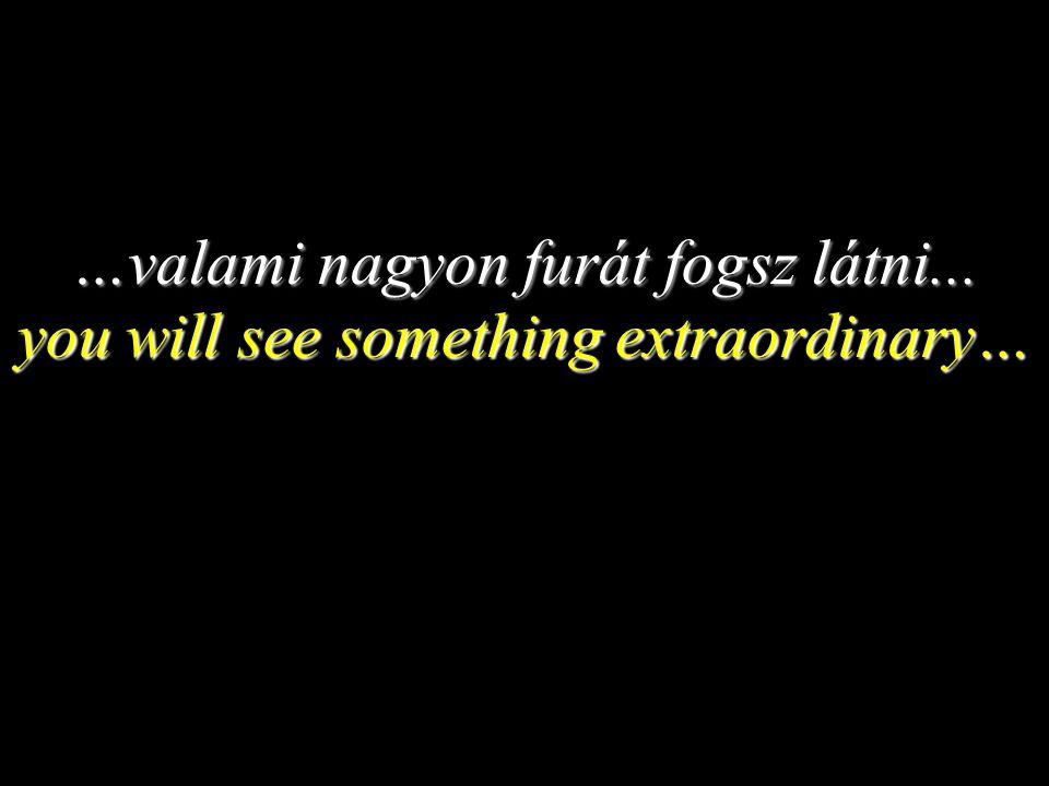 …valami nagyon furát fogsz látni... you will see something extraordinary…