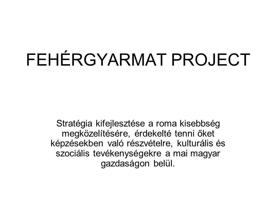 FEHÉRGYARMAT PROJECT Stratégia kifejlesztése a roma kisebbség megközelítésére, érdekelté tenni őket képzésekben való részvételre, kulturális és szociális tevékenységekre a mai magyar gazdaságon belül.