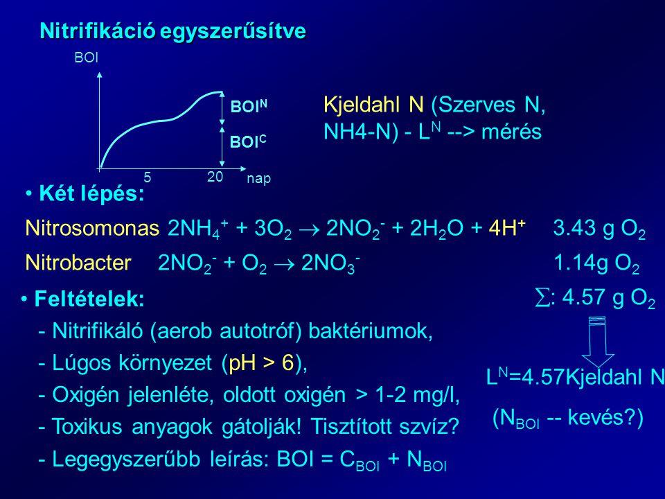 Nitrifikáció egyszerűsítve 5 20 nap BOI BOI C BOI N Kjeldahl N (Szerves N, NH4-N) - L N --> mérés Két lépés: Nitrosomonas 2NH 4 + + 3O 2  2NO 2 - + 2H 2 O + 4H + Nitrobacter2NO 2 - + O 2  2NO 3 - 3.43 g O 2 1.14g O 2  : 4.57 g O 2 L N =4.57Kjeldahl N (N BOI -- kevés ) Feltételek: - Nitrifikáló (aerob autotróf) baktériumok, - Lúgos környezet (pH > 6), - Oxigén jelenléte, oldott oxigén > 1-2 mg/l, - Toxikus anyagok gátolják.