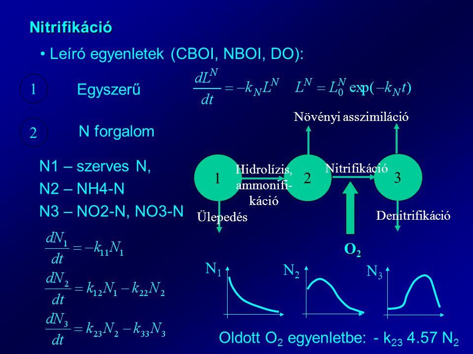 Nitrifikáció Leíró egyenletek (CBOI, NBOI, DO): 1 2 Egyszerű N forgalom 1 2 3 Ülepedés Denitrifikáció Növényi asszimiláció Hidrolízis, ammonifi- káció Nitrifikáció O2O2O2O2 N1 – szerves N, N2 – NH4-N N3 – NO2-N, NO3-N N1N1 N2N2 N3N3 Oldott O 2 egyenletbe: - k 23 4.57 N 2