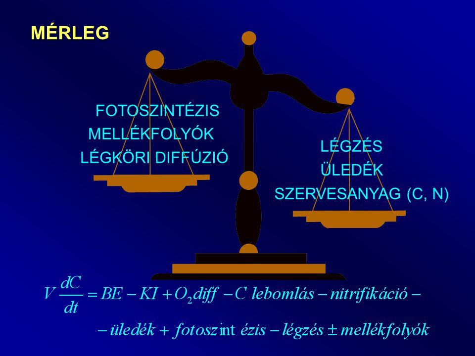 MÉRLEG SZERVESANYAG (C, N) ÜLEDÉK LÉGZÉS LÉGKÖRI DIFFÚZIÓ FOTOSZINTÉZIS MELLÉKFOLYÓK