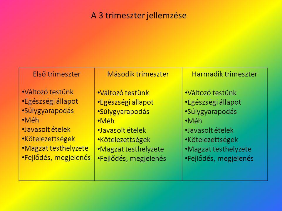 A 3 trimeszter jellemzése Első trimeszter Változó testünk Egészségi állapot Súlygyarapodás Méh Javasolt ételek Kötelezettségek Magzat testhelyzete Fej