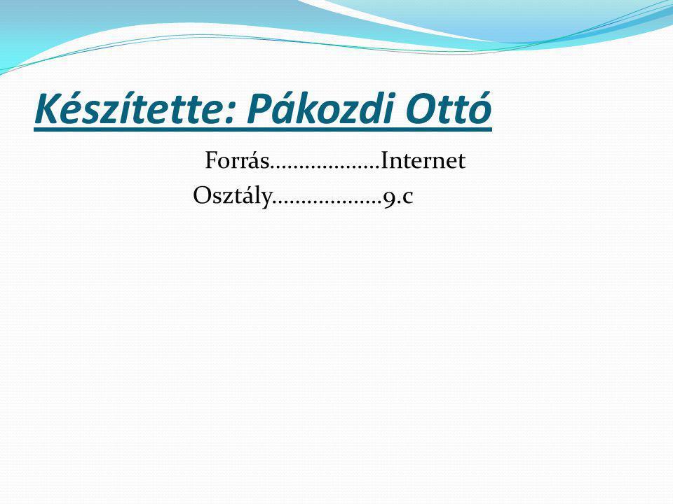 Készítette: Pákozdi Ottó Forrás……………….Internet Osztály……………….9.c