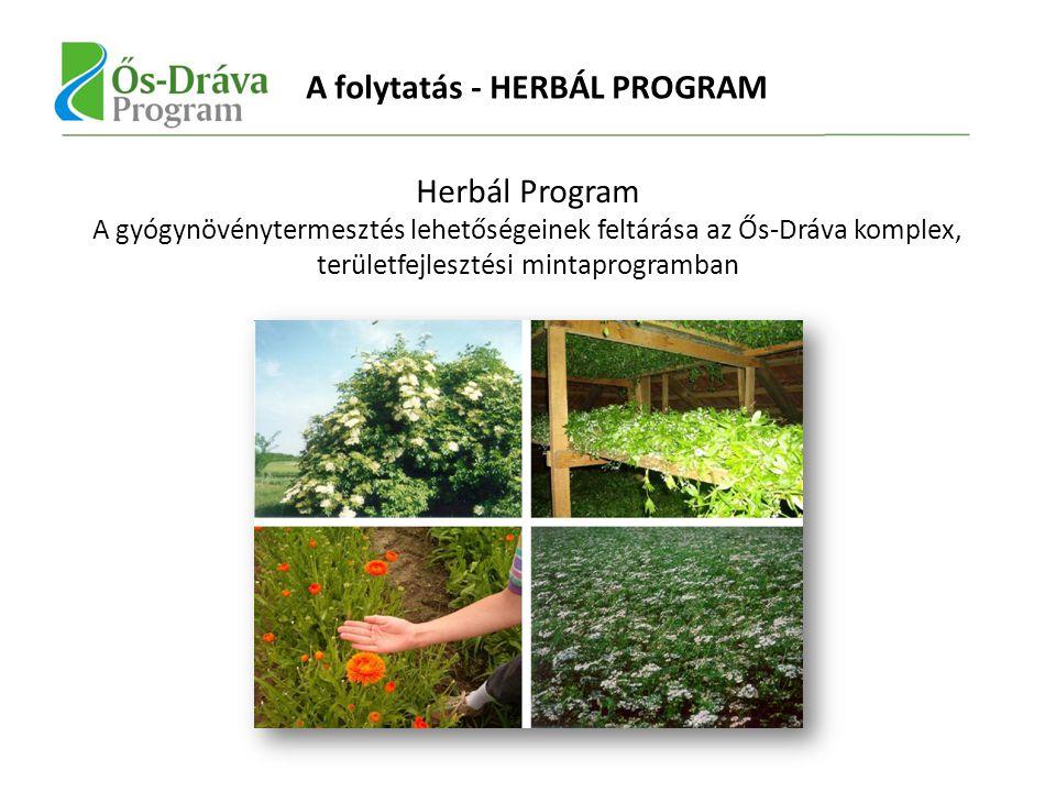 Herbál Program A gyógynövénytermesztés lehetőségeinek feltárása az Ős-Dráva komplex, területfejlesztési mintaprogramban A folytatás - HERBÁL PROGRAM