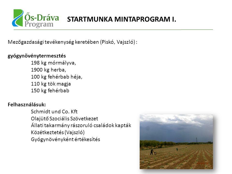 Mezőgazdasági tevékenység keretében (Piskó, Vajszló) : gyógynövénytermesztés 198 kg mórmályva, 1900 kg herba, 100 kg fehérbab héja, 110 kg tök magja 150 kg fehérbab Felhasználásuk: Schmidt und Co.