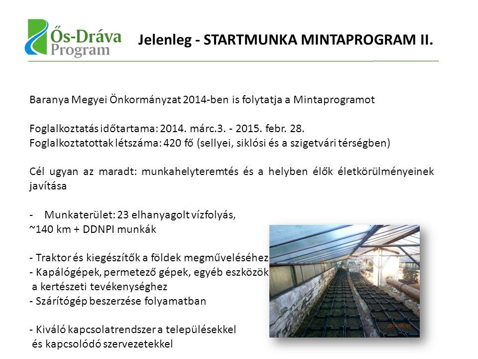 Jelenleg - STARTMUNKA MINTAPROGRAM II.