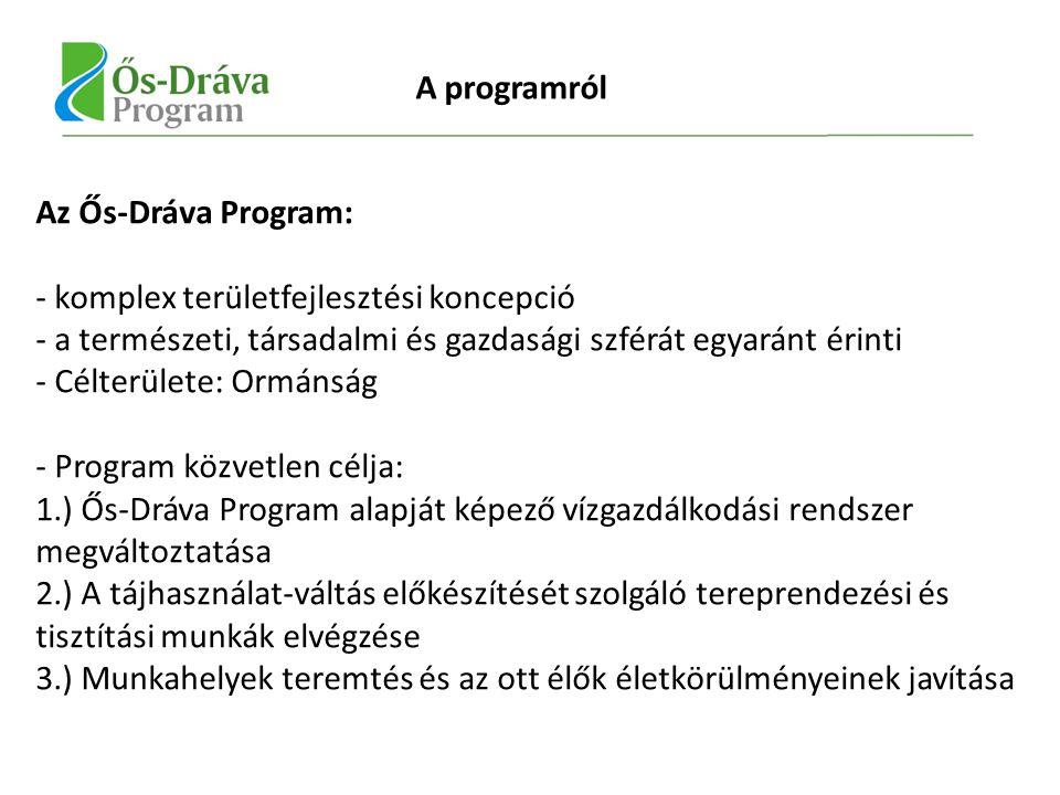 Az Ős-Dráva Program: - komplex területfejlesztési koncepció - a természeti, társadalmi és gazdasági szférát egyaránt érinti - Célterülete: Ormánság - Program közvetlen célja: 1.) Ős-Dráva Program alapját képező vízgazdálkodási rendszer megváltoztatása 2.) A tájhasználat-váltás előkészítését szolgáló tereprendezési és tisztítási munkák elvégzése 3.) Munkahelyek teremtés és az ott élők életkörülményeinek javítása A programról