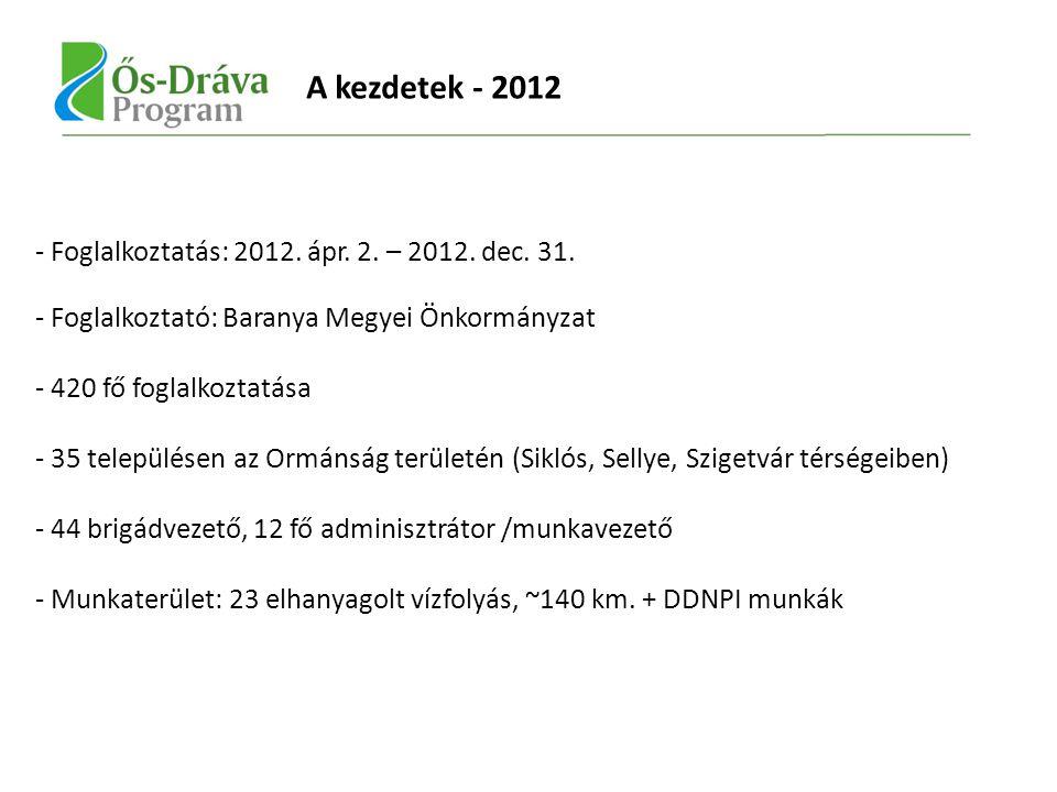 - Foglalkoztatás: 2012. ápr. 2. – 2012. dec. 31.