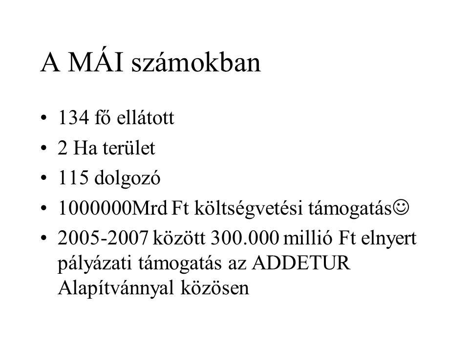 A MÁI számokban 134 fő ellátott 2 Ha terület 115 dolgozó 1000000Mrd Ft költségvetési támogatás 2005-2007 között 300.000 millió Ft elnyert pályázati támogatás az ADDETUR Alapítvánnyal közösen