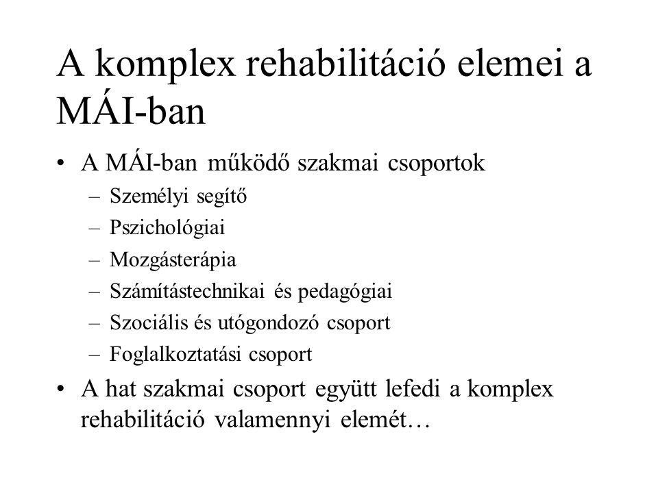 A komplex rehabilitáció elemei a MÁI-ban A MÁI-ban működő szakmai csoportok –Személyi segítő –Pszichológiai –Mozgásterápia –Számítástechnikai és pedag