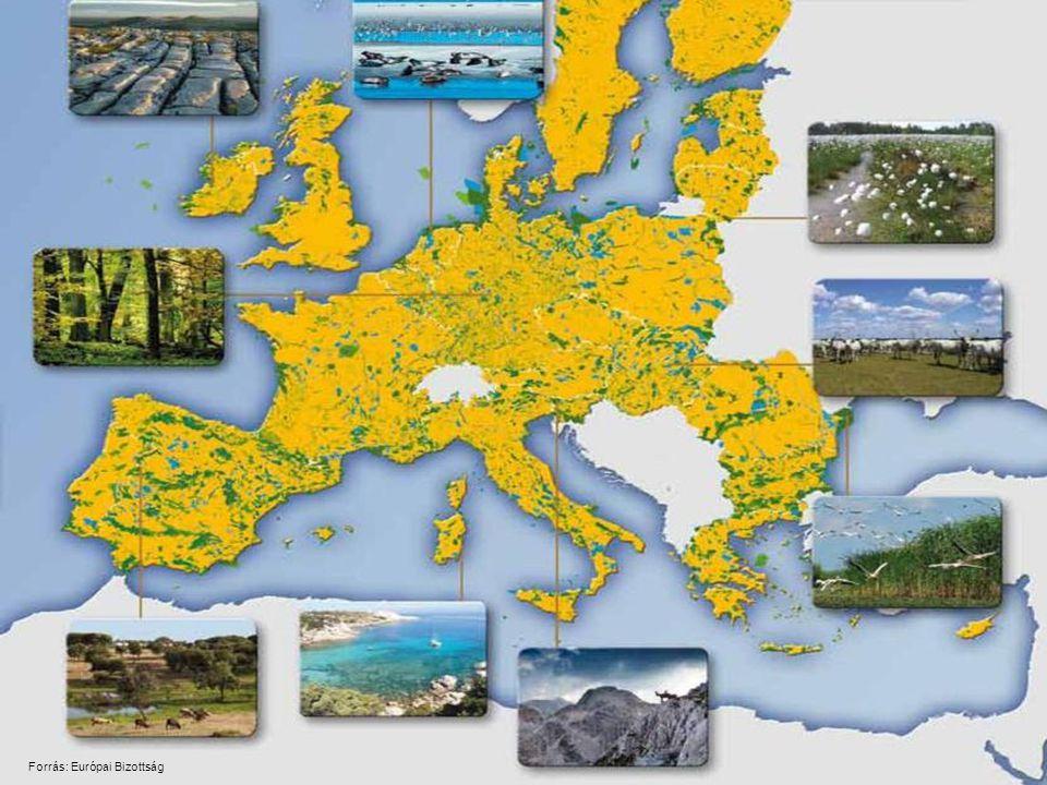 Az élőhelyek védettségi állapotának értékelése* *Európai Környezetvédelmi Ügynökség