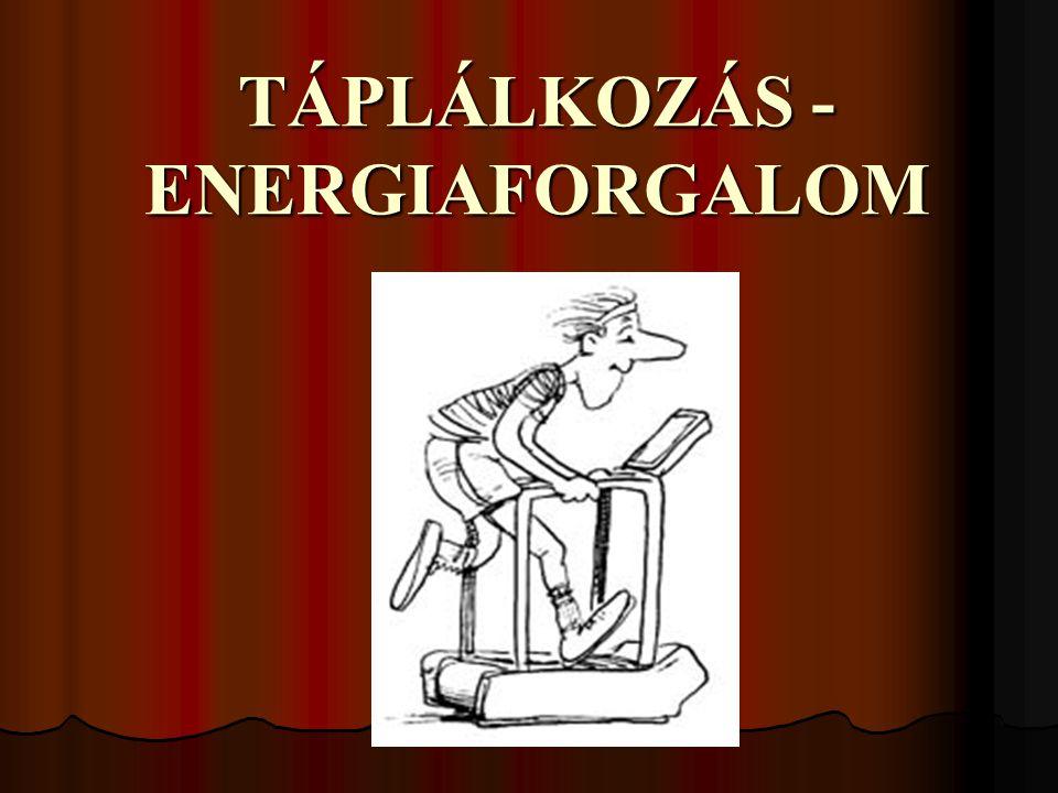 INZULIN-HATÁS csökkenti a vér glukóz koncentrációját csökkenti a vér glukóz koncentrációját izom és zsírsejtek fokozott glukózfelvétele izom és zsírsejtek fokozott glukózfelvétele gátolja a máj glukózleadását gátolja a máj glukózleadását csökkenti a vér szabad zsírsav koncentrációját csökkenti a vér szabad zsírsav koncentrációját a zsírszövet lipolízisének gátlása a zsírszövet lipolízisének gátlása