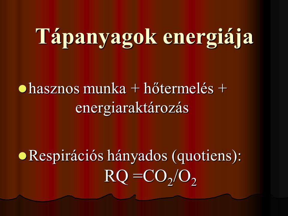 Tápanyagok energiája hasznos munka + hőtermelés + energiaraktározás hasznos munka + hőtermelés + energiaraktározás Respirációs hányados (quotiens): RQ =CO 2 /O 2 Respirációs hányados (quotiens): RQ =CO 2 /O 2