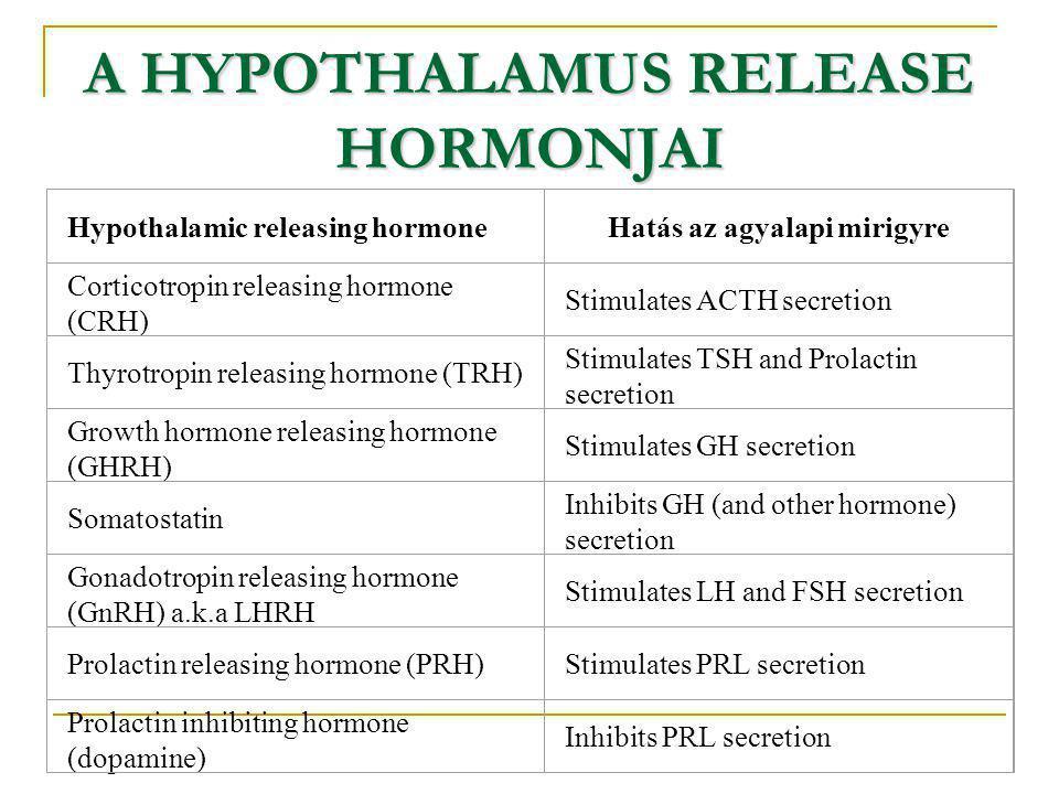 Hypothalamic releasing hormoneHatás az agyalapi mirigyre Corticotropin releasing hormone (CRH) Stimulates ACTH secretion Thyrotropin releasing hormone