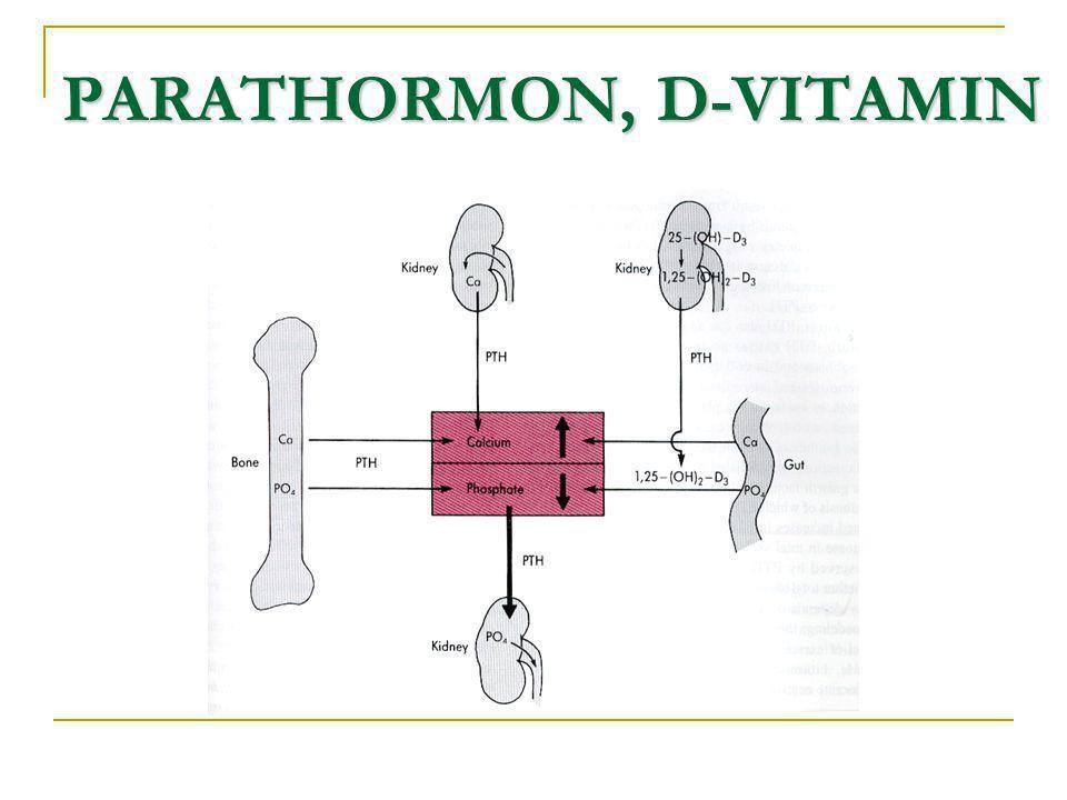 PARATHORMON, D-VITAMIN PARATHORMON, D-VITAMIN