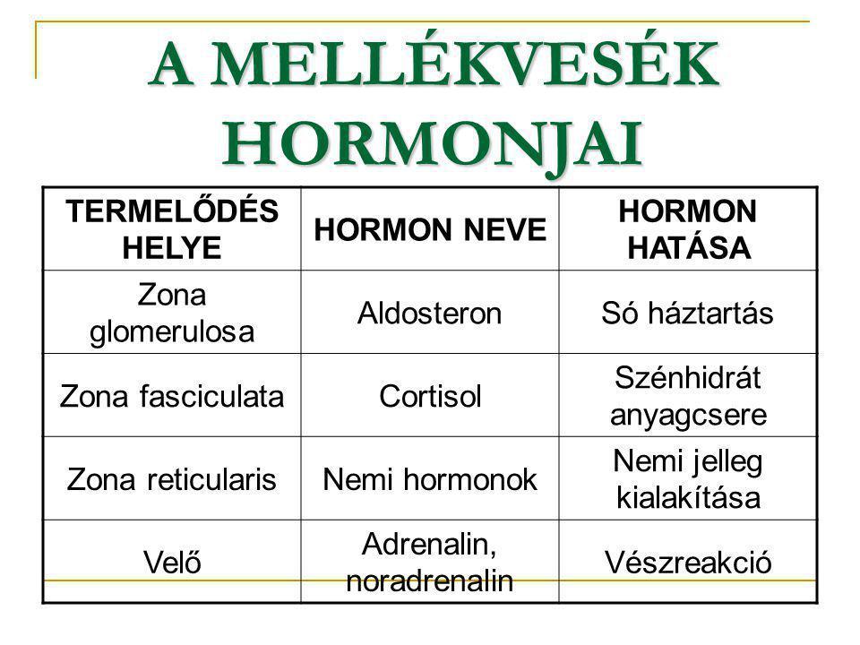 A MELLÉKVESÉK HORMONJAI TERMELŐDÉS HELYE HORMON NEVE HORMON HATÁSA Zona glomerulosa AldosteronSó háztartás Zona fasciculataCortisol Szénhidrát anyagcs