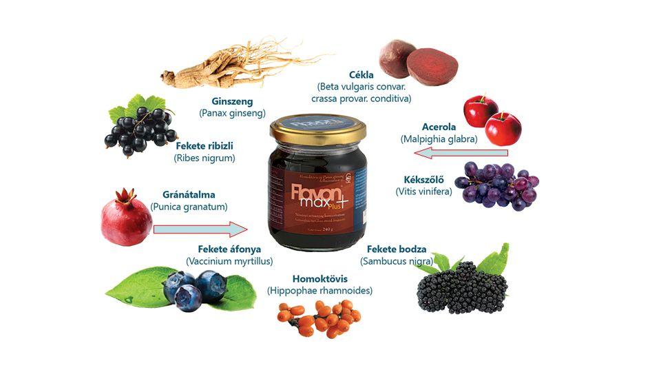 Összetevők: Homoktövis, fekete ribizli, fekete áfonya, fekete bodza, gonszeng, cékla, kékszőlő, acerola, gránátalma Acerola A C-vitamin és több mint 150 más anyag (vas, A- vit., thiamin, riboflavin, Mg, K, Ca, bioflavonoidok, foszfort, Gránátalma Flavonoidok, Kálium, Ca, C-vitamin