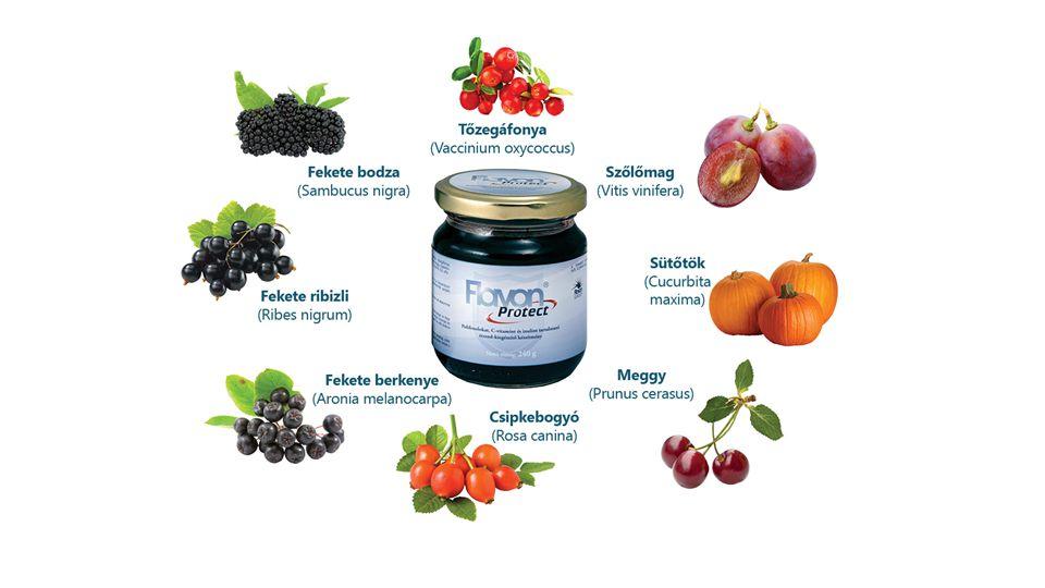 Flavon Protect Fekete berkenye, ribizli, bodza, meggy Tőzegáfonya, sütőtök, szőlőmag, csipkebogyó Tőzegáfonya: Szerves gyümölcssavak, flavonoidok, vitaminok, ásványi anyagok, nyomelemek, antocianoidokSütőtök Kalcium, cink, mangán, réz, vas, foszfor, C-vitamin, karotin, biotin, niacin, pantoténsav, B1, B2, B6, fólsav.